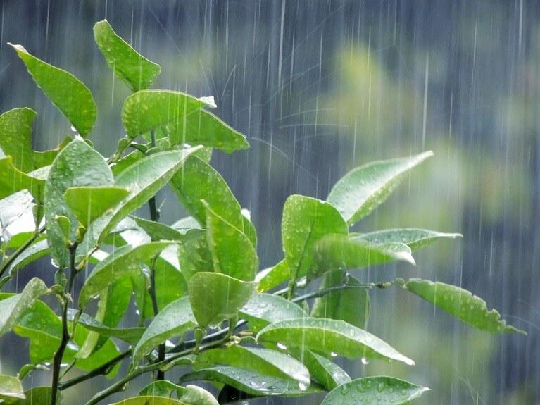 めまいと天気や季節の関係性